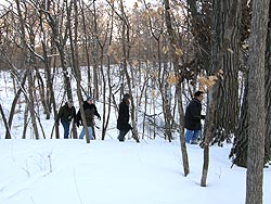 Studying the ecology of winter
