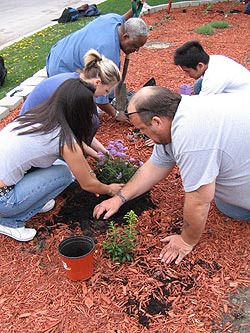 Planting flowers at the butterfly garden